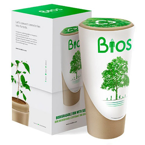 Biodegradable ashes urns